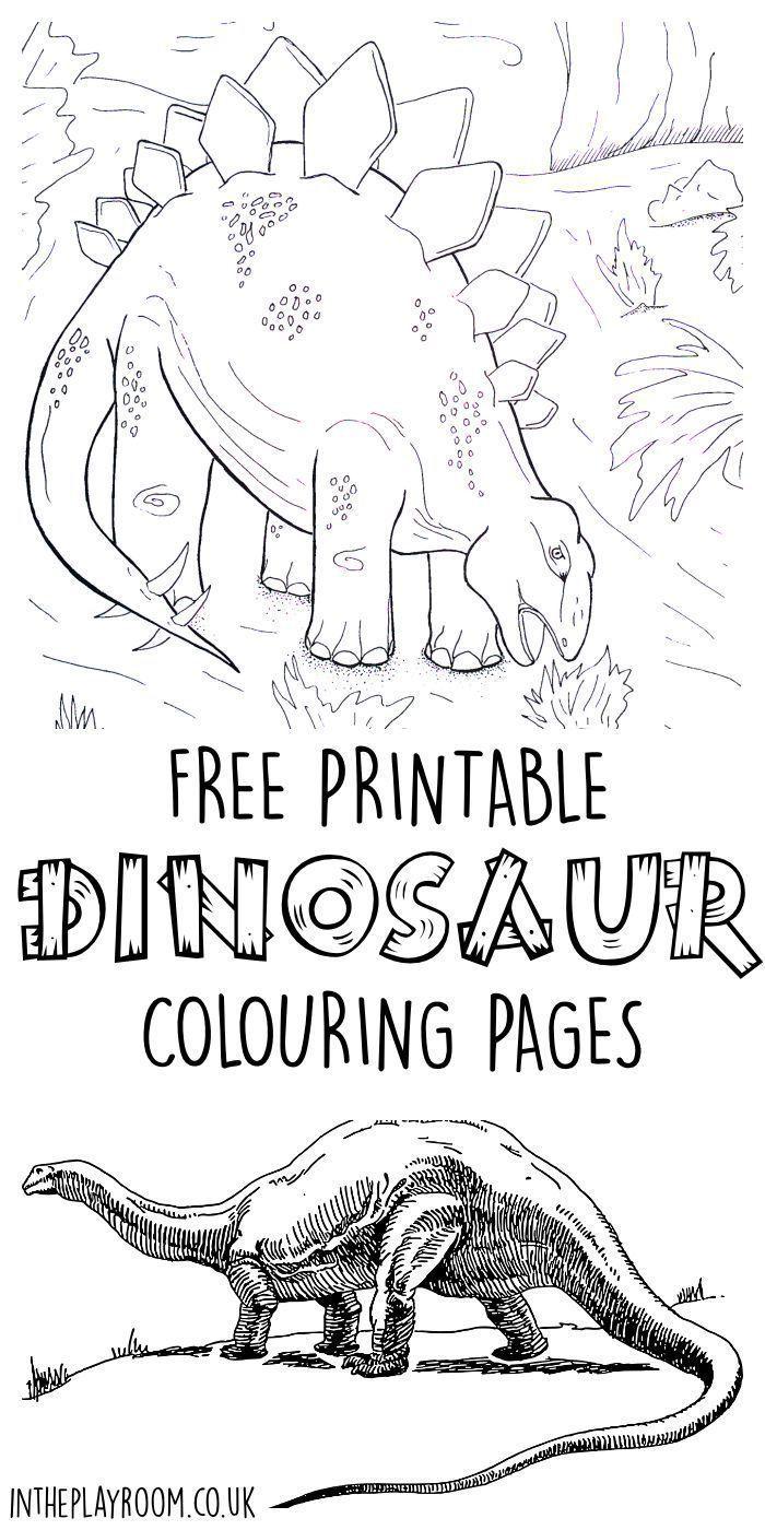 1000+ ideas about Dinosaur Decorations on Pinterest