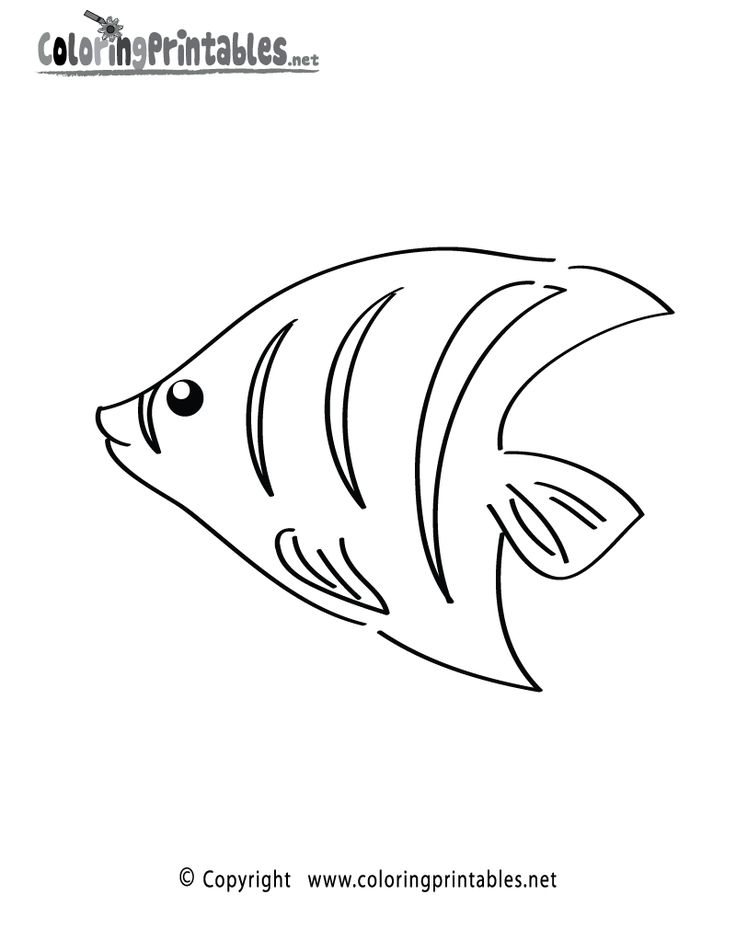 sea fish coloring pages   word free tropical fish