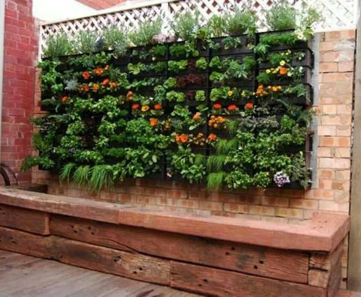 25 Best Images About Organic Wall Garden On Pinterest Green