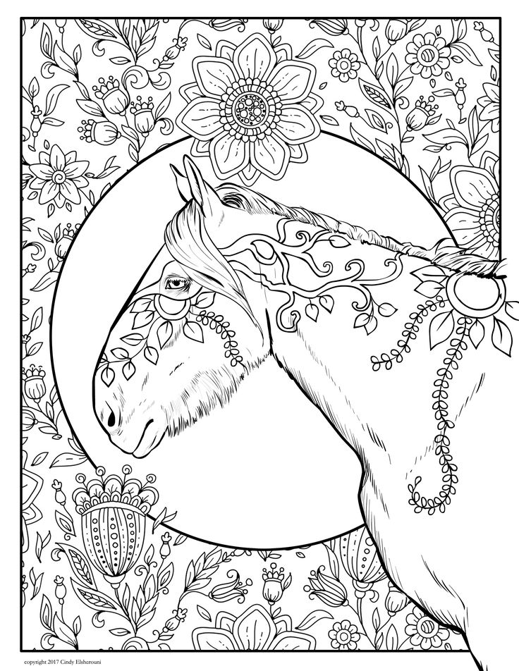 282 best images about Horses to colour on Pinterest