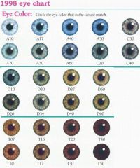 25+ best ideas about Eye Color Charts on Pinterest ...