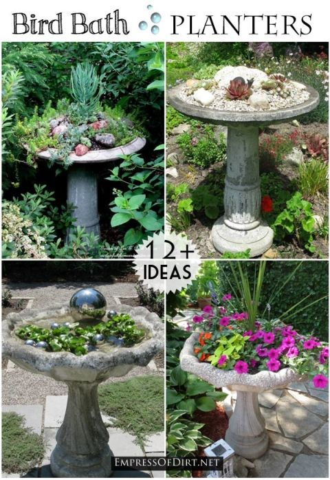 25 Best Ideas About Bird Bath Planter On Pinterest Succulents