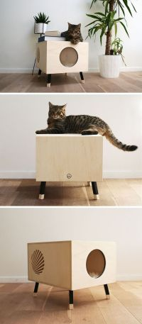 Best 25+ Cat design ideas on Pinterest | Black cat ...