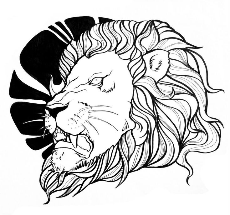 17 Best images about Lion Tattoo Outline on Pinterest