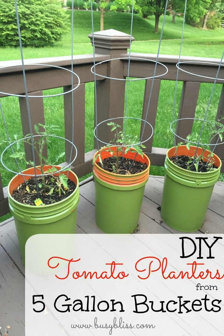 Cheap Vegetable Planters