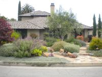 Layered landscape of Mediterranean plants | Xeriscape and ...