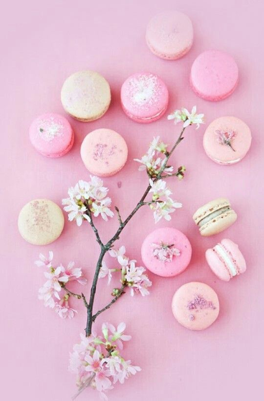 Cute Macaroons Hd Wallpaper Macaroons And Cherry Blossoms Iphone Wallpaper Pink