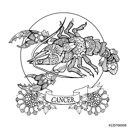 17 Best ideas about Cancer Zodiac Signs on Pinterest