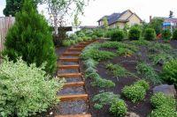 side yard landscaping ideas steep hillside | Sloped Lot ...