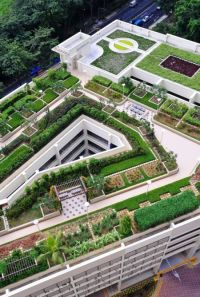 478 best images about Roof garden landscape toiture ...
