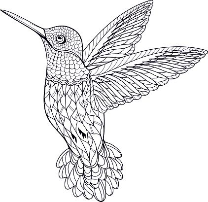 650 best images about Animal Coloring Pages for Adults on