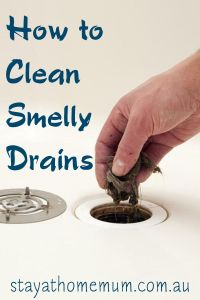 17 Best ideas about Smelly Drain on Pinterest   Natural ...