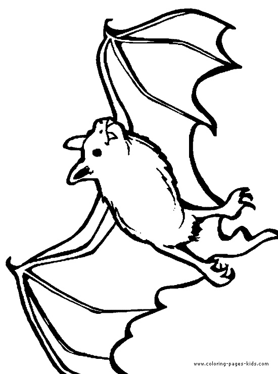 bat coloring, bats, animal coloring pages, color plate