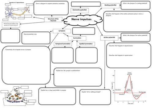 101 best images about Secondary: GCSE Science Revision on