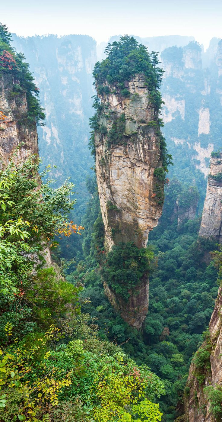 Alone rock column mountain (Avatar rocks). Zhangjiajie National Forest Park was officially recognized as a UNESCO World Heritage