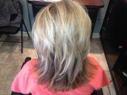 lowlights gray hair