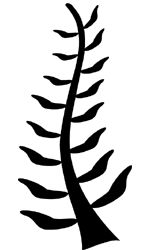 88 best images about Adinkra Symbols on Pinterest