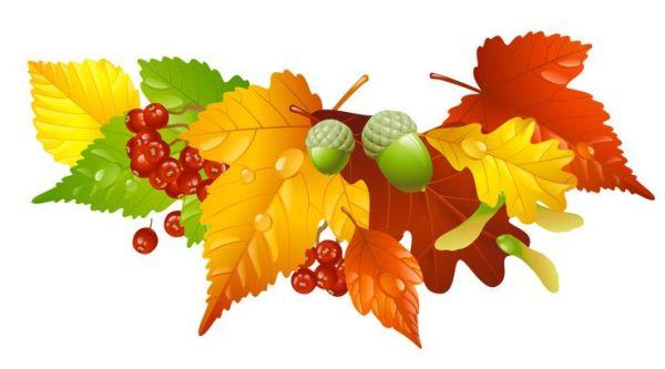 autumn leaves and acorns decor