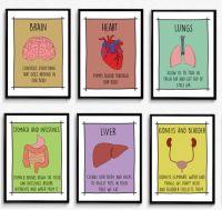 810 best images about school nurse on Pinterest ...
