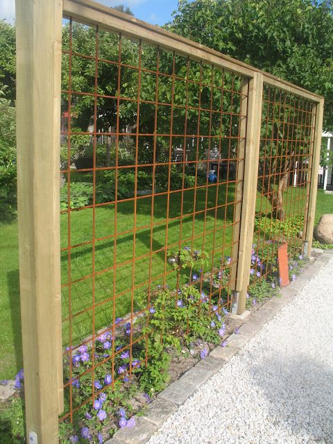 25 Best Ideas About Garden Trellis On Pinterest Trellis