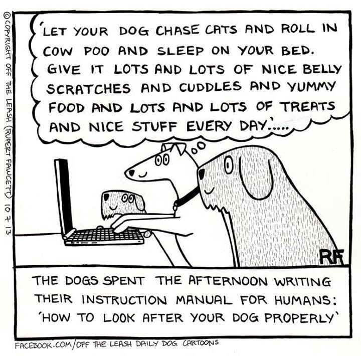 1000+ images about Off the Leash Cartoon on Pinterest