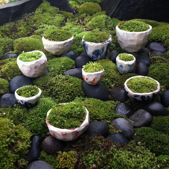 296 Best Images About Moss Garden Ideas On Pinterest Gardens