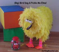 1000+ ideas about Big Bird Costume on Pinterest | Big Bird ...