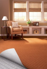 1000+ images about StainMaster Carpet on Pinterest | Shaw ...