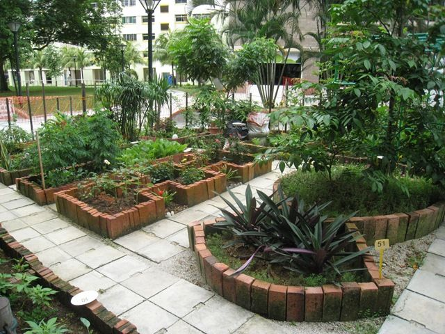160 Best Images About Community Gardens On Pinterest Gardens