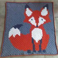 En iyi 17 fikir, C2c Crochet Blanket Pinterest'te | T ...
