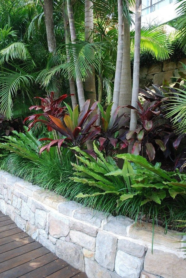 25 Best Ideas About Tropical Landscaping On Pinterest Small