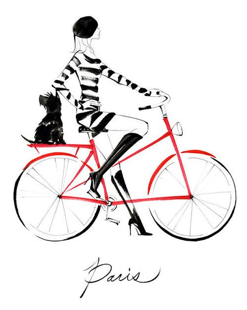506 best images about Animals on Bicycles on Pinterest