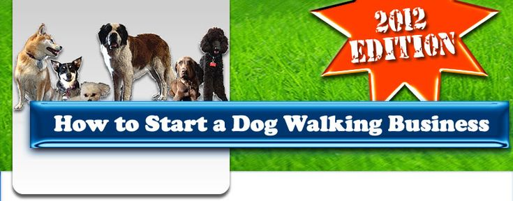 17 Best images about dog walking on Pinterest | App ...