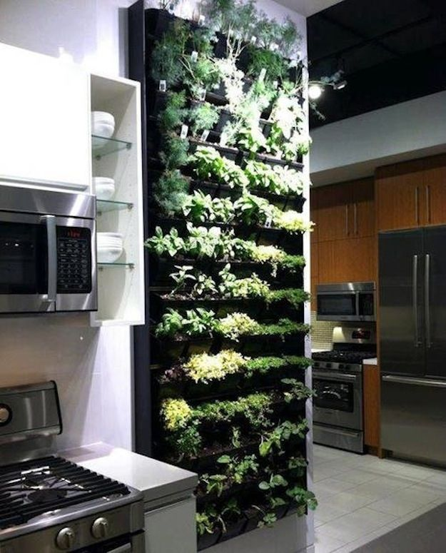 25 Best Ideas About Indoor Herb Planters On Pinterest Indoor