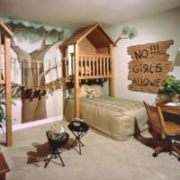 Little Boy Bedroom Furniture Ideas : Fascinating Treehouse ...