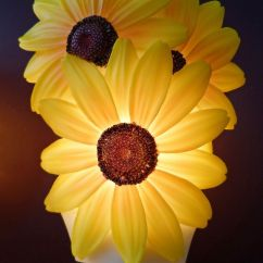 Decorative Kitchen Plates For Wall Exhaust Vent Cap Sunflower Decor | Night Light ...