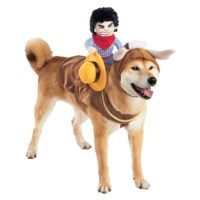 37 best images about Pet Halloween Costumes on Pinterest ...