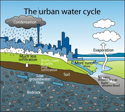 green roof water runoff diagram 1988 toyota pickup stereo wiring the urban cycle:- shows consequences of increased development. more development and ...