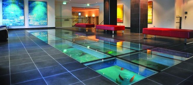 Under Floor Aquarium Dream Home Ideas Pinterest