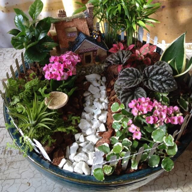 347 Best Images About Fabulous Fairy Gardens On Pinterest