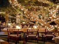 decoration lights outdoor | ... Ideas: Outdoor Dinner ...