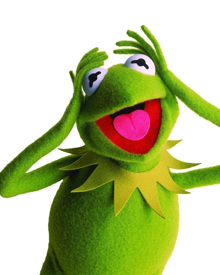 Kermit Frog Friends