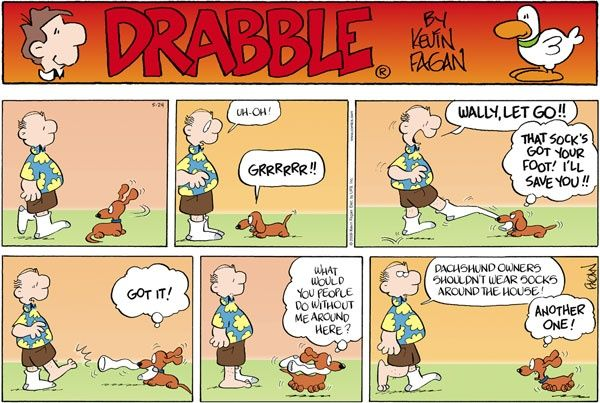 1000 images about Wally of Drabble Dachshund Comics on