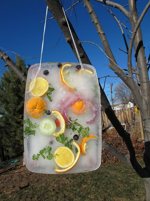 1000 Images About Outdoor Ideas Eyfs On Pinterest Bird Feeders Plays And Leaves