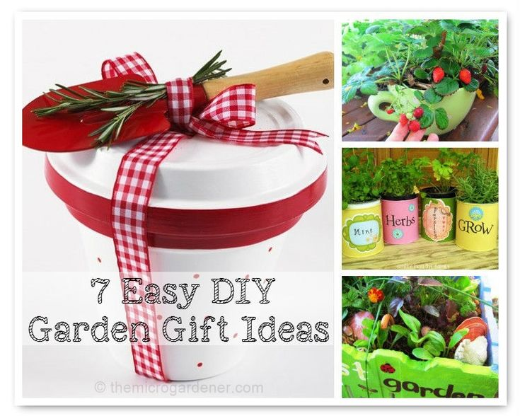 17 Best Images About Garden Gift Ideas On Pinterest Gardens