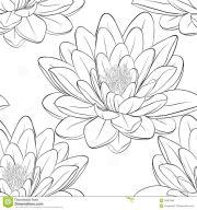 japanese lotus flower outline