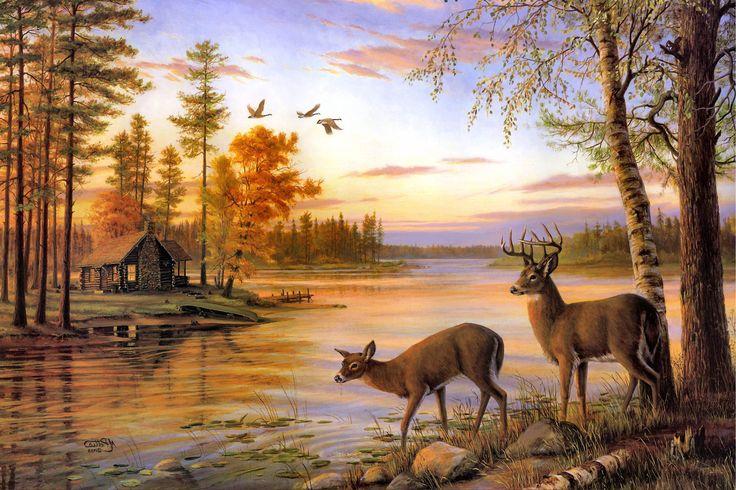 Cute Baby Hug Wallpapers Two Deer Drink Water On The River When Sunset Desktop