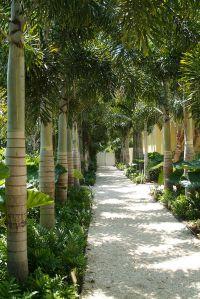 DWY Landscape Architects | Residential Landscape ...