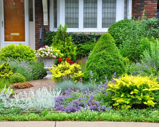 1000 grassless landscaping