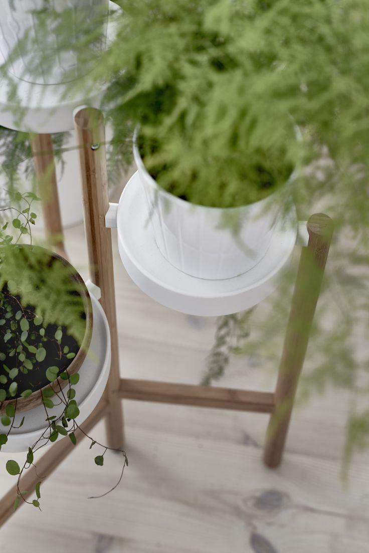 20 beste ideen over Plantenstandaard op Pinterest